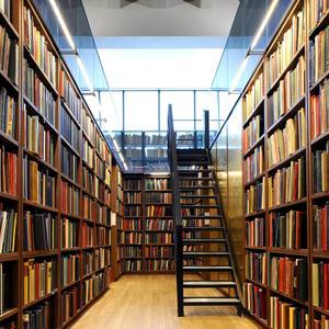 Библиотеки Берендеево