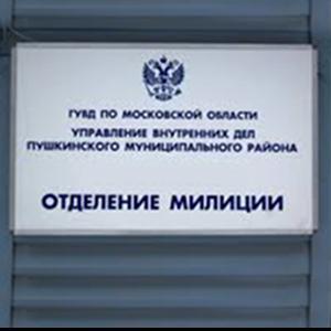 Отделения полиции Берендеево