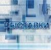 Выставки в Берендеево